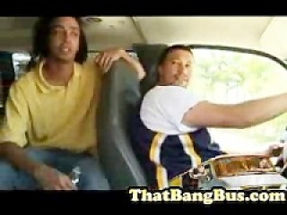 Gang Bang on the Bang Bus