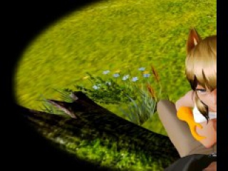 Foxy in the park - Honey Select [ILLUSION GAME] VR capture